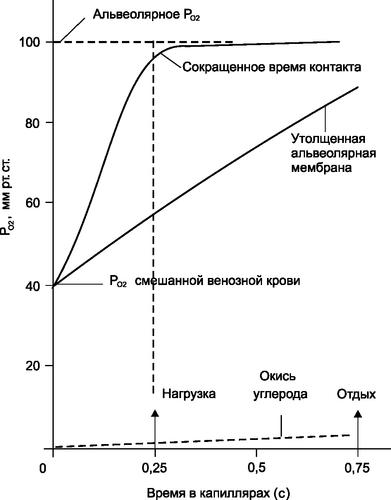 Временные характеристики изменения РО2 в легочных капиллярах при нормальной диффузии, сокращенном времени контакта и утолщенной альвеолокапиллярной мембране